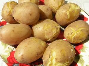Haşlanmış-Patates